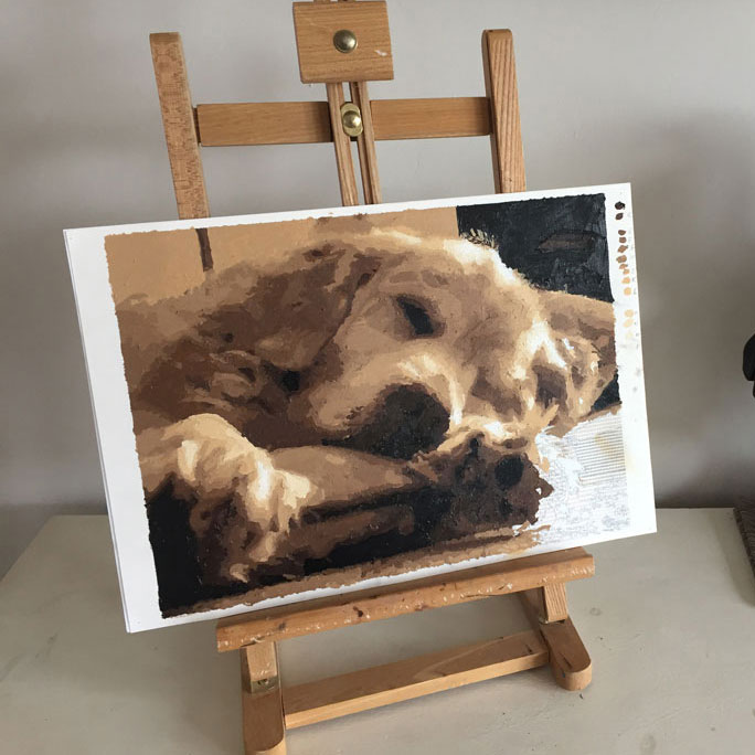 old golden retriever painting by numbers