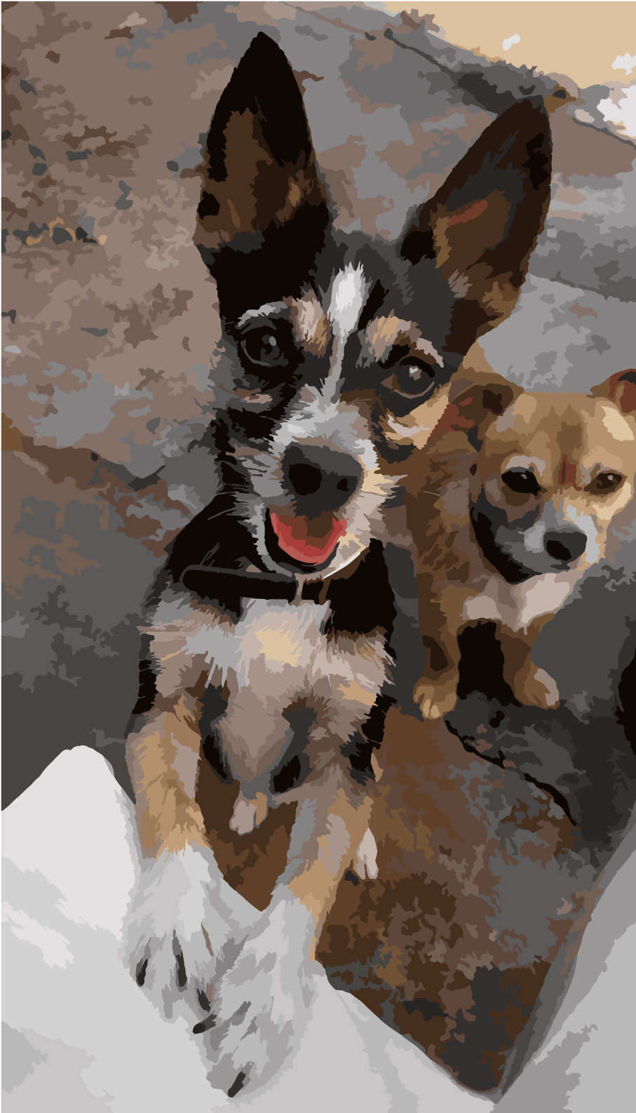 Chihuahuas painting by number artwork
