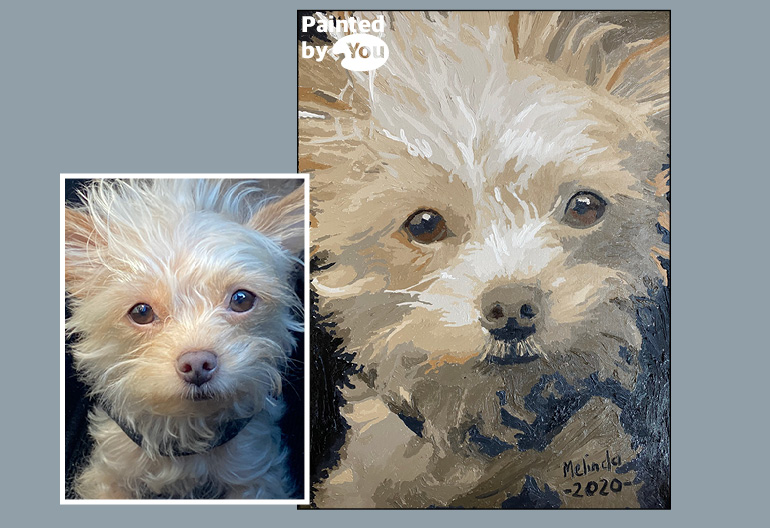 small dog paint by numbers
